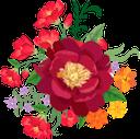 красный цветок, растение, цветы, красный, флора, red flower, plant, flowers, red, rote blume, pflanze, blumen, rot, fleur rouge, plante, fleurs, rouge, flore, flor roja, rojo, fiore rosso, pianta, fiori, rosso, flor vermelha, planta, flores, vermelho, flora, червона квітка, рослина, квіти, червоний