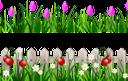 трава, забор, цветы, ромашка, тюльпан, клубника, зеленая трава, зеленое растение, газон, зеленый, grass, fence, flowers, chamomile, tulip, strawberry, green grass, green plant, lawn, green, gras, zaun, blumen, kamille, tulpe, erdbeere, grünes gras, grüne pflanze, rasen, grün, herbe, clôture, fleurs, camomille, tulipe, fraise, vert herbe, plante verte, pelouse, vert, pasto, manzanilla, tulipán, fresa, pasto verde, césped, erba, recinzione, fiori, camomilla, tulipano, fragola, erba verde, pianta verde, prato, grama, cerca, flores, camomila, tulipa, morango, grama verde, planta verde, gramado, verde, паркан, квіти, полуниця, зелена трава, зелена рослина, зелений