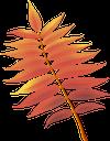 рябина, листок рябины, желтый лист, осенние листья, осень, осенний лист, листок дерева, листопад, a sheet of mountain ash, a yellow leaf, autumn, autumn leaves, a leaf of a tree, a fall leaf, ahorn, ein blatt eberesche, ein gelbes blatt, herbst, herbstlaub, ein blatt eines baumes, ein herbstblatt, une feuille de cendre de montagne, une feuille jaune, l'automne, des feuilles d'automne, une feuille d'arbre, une feuille d'automne, una hoja de ceniza de montaña, una hoja amarilla, otoño, hojas de otoño, una hoja de un árbol, una hoja de otoño, un foglio di cenere di montagna, una foglia gialla, autunno, foglie autunnali, una foglia di un albero, una foglia caduta, ashberry, uma folha de cinza de montanha, uma folha amarela, outono, folhas de outono, uma folha de uma árvore, uma folha de outono, горобина, листок горобини, жовтий лист, осіннє листя, осінь, осінній лист