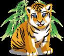 животные, тигр, уссурийский тигр, индийский тигр, тигренок, animals, tiere, tiger, ussuri tiger, indian tiger, tiger cub, animaux, tigre d'ussuri, tigre indien, animales, tigre indio, cachorro de tigre, animali, tigre indiana, cucciolo di tigre, animais, tigre, tigre ussuri, tigre indiano, filhote de tigre, тварини, уссурійський тигр, індійський тигр, тигреня