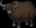 буйвол, бык, як, парнокопытные, животные, фауна, buffalo, bull, animals, büffel, stier, tiere, buffle, taureau, artiodactyles, animaux, faune, artiodáctilos, animales, bufalo, toro, yak, artiodattili, animali, búfalo, touro, iaque, artiodactyls, animais, fauna, бик, парнокопитні, тварини