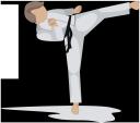 каратист, каратэ, спортсмен, спорт, sportsman, sportler, karaté, athlète, sports, deportes, sport, karatê, karate, atleta, esportes, карате