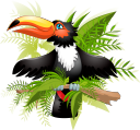 попугай, животные, птицы, фауна, parrot, animals, birds, papagei, tiere, vögel, perroquet, animaux, oiseaux, faune, loro, animales, pájaros, pappagallo, animali, uccelli, papagaio, animais, aves, fauna, папуга, тварини, птахи