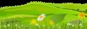 трава, ромашка, лужайка, ландшафт, зеленый, grass, daisy, lawn, landscape, green, gras, gänseblümchen, rasen, landschaft, grün, herbe, marguerite, pelouse, paysage, vert, hierba, margarita, césped, paisaje, erba, margherita, prato, paesaggio, grama, margarida, gramado, paisagem, verde, галявина, зелений