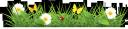 зеленая трава, полевые цветы, лужайка, полевые ромашки, бабочка, божья коровка, природа, green grass, wildflowers, lawn, field daisies, butterfly, ladybug, grüne gras, wilde blumen, rasen, feld gänseblümchen, schmetterling, marienkäfer, natur, herbe verte, des fleurs sauvages, pelouse, marguerites sur le terrain, papillon, coccinelle, nature, hierba verde, flores silvestres, césped, margaritas de campo, mariposa, mariquita, naturaleza, erba verde, fiori di campo, prato, margherite di campo, farfalla, coccinella, natura, grama verde, flores selvagens, gramado, margaridas do campo, borboleta, joaninha, natureza