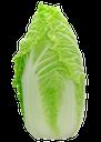 китайская капуста, пекинская капуста, салатная капуста, петсай, chinese cabbage, peking cabbage, lettuce, peces, chinakohl, kohlsalat, chou chinois, salade de chou, col china, ensalada de col, cavolo cinese, insalata di cavolo, couve chinesa, salada de repolho, petsay
