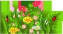ромашка, ромашковое поле, трава, ромашка луговая, божья коровка, полевые цветы, chamomile, chamomile field, grass, chamomile meadow, ladybug, wild flowers, kamille, kamille feld, gras, kamille wiese, marienkäfer, wilde blumen, camomille, champ de camomille, herbe, prairie de camomille, coccinelle, fleurs sauvages, manzanilla, campo de la manzanilla, hierba, prado de manzanilla, mariquita, camomilla, campo di camomilla, erba, prato di camomilla, coccinella, fiori selvatici, camomila, campo de camomila, grama, prado de camomila, joaninhas, flores silvestres, ромашкове поле, ромашка лугова, сонечко, польові квіти