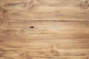 текстура дерево, texture tree, textur des holzes, la texture du bois, textura de la madera, trama di legno, textura de madeira, текстура дерева