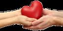 рука, кисть руки, жест, пальцы, часть тела, ладонь, открытая ладонь, пальцы руки, указательный палец, ладони вместе, сердце, день святого валентина, валентинка, любовь, красный, подарок