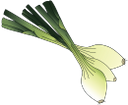 лук порей, зеленый лук, корнеплод, специи, leeks, green onions, root vegetables, spices, lauch, grüne zwiebeln, wurzelgemüse, gewürze, poireaux, oignons verts, légumes-racines, épices, puerros, cebollas verdes, tubérculos, especias, porri, cipolle verdi, ortaggi a radice, spezie, alho-poró, cebolas verdes, raízes, especiarias, цибуля порей, зелена цибуля, коренеплід, спеції