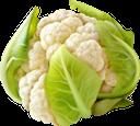 цветная капуста, капуста, овощи, cauliflower, cabbage, vegetables, blumenkohl, kohl, gemüse, chou-fleur, chou, légumes, coliflor, repollo, verduras, cavolfiore, cavolo, verdure, couve-flor, repolho, legumes, цвітна капуста, овочі