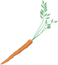 овощи, морковь, морковка, vegetables, carrots, gemüse, karotten, légumes, carottes, verduras, zanahorias, verdure, carote, legumes, cenouras, овочі, морква