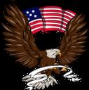 белоголовый орлан, хищная птица, семейство ястребиных, американская птица, птицы, bald eagle, bird of prey, hawk family, american bird, symbol of america, birds, weißkopfseeadler, greifvogel, falkenfamilie, amerikanischer vogel, symbol von amerika, vögel, pygargue à tête blanche, oiseau de proie, famille des faucons, oiseau américain, symbole de l'amérique, oiseaux, águila calva, ave de rapiña, familia halcón, ave americana, símbolo de américa, pájaros, aquila calva, rapace, famiglia del falco, uccello americano, simbolo dell'america, uccelli, águia careca, ave de rapina, família de falcão, pássaro americano, símbolo da américa, pássaros, білоголовий орлан, хижий птах, сімейство яструбиних, американська птиця, символ америки, птиці