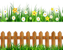 трава, забор, цветы, ромашка, нарцисс, зеленая трава, зеленое растение, газон, зеленый, grass, fence, flowers, chamomile, narcissus, green grass, green plant, lawn, green, gras, zaun, blumen, kamille, narzisse, grünes gras, grüne pflanze, rasen, grün, herbe, clôture, fleurs, camomille, narcisse, vert herbe, plante verte, pelouse, vert, hierba, manzanilla, hierba verde, césped, erba, recinzione, fiori, camomilla, erba verde, pianta verde, prato, grama, cerca, flores, camomila, narciso, grama verde, planta verde, gramado, verde, паркан, квіти, нарцис, зелена трава, зелена рослина, зелений