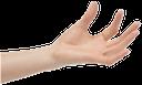 рука, кисть руки, жест, пальцы, часть тела, ладонь, открытая ладонь, пальцы руки, указательный палец, ладонь вверх