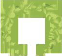 листья, зеленый лист, рамка для фотошопа, венок, зеленое растение, leaves, green leaf, frame for photoshop, wreath, green plant, blätter, grünes blatt, rahmen für photoshop, kranz, grüne pflanze, feuilles, feuille verte, cadre pour photoshop, couronne, plante verte, hojas, hoja verde, marco para photoshop, corona, foglie, foglia verde, cornice per photoshop, ghirlanda, pianta verde, folhas, folha verde, quadro para photoshop, grinalda, planta verde, листя, зелений лист, рамка для фотошопу, вінок, зелена рослина