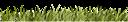 зеленое поле, лужайка, зеленая трава, зеленое растение, green grass, green plant, grünes gras, grünpflanze, herbe verte, plante verte, hierba verde, erba verde, pianta verde, grama verde, planta verde