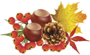 желтый лист, осенняя листва, кленовый лист, осень, рябина, yellow leaf, autumn foliage, maple leaf, autumn, pine cone, chestnut, mountain ash, gelbes blatt, herbstlaub, ahornblatt, herbst, kegel, kastanie, eberesche, feuille jaune, feuillage d'automne, feuille d'érable, automne, cône, châtaignier, sorbier, hoja amarilla, follaje de otoño, hoja de arce, otoño, castaña, foglia gialla, fogliame autunnale, foglia d'acero, autunno, cono, di castagno, di sorbo, folha amarela, folhagem de outono, folha de bordo, outono, cone, castanha, rowan, жовтий лист, осіннє листя, кленовий лист, осінь, шишка, каштан, горобина