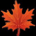 красный кленовый лист, осень, канада, red maple leaf, autumn, rotes ahornblatt, herbst, kanada, feuille d'érable rouge, automne, hoja de arce rojo, otoño, canadá, foglia d'acero rosso, autunno, folha de bordo vermelho, outono, canada, клен