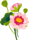 лотос, цветок лотоса, розовый цветок, цветы, флористика, флора, lotus flower, pink flower, flowers, lotusblume, rosa blume, blumen, fleur de lotus, fleur rose, fleurs, flore, lotus, flor de loto, loto, fiore di loto, fiore rosa, fiori, lótus, flor de lótus, flor rosa, flores, flora, квітка лотоса, рожева квітка, квіти