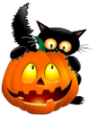 хэллоуин, черный кот, тыква, black cat, pumpkin, schwarze katze, kürbis, chat noir, citrouille, gato negro, calabaza, halloween, gatto nero, zucca, o dia das bruxas, gato preto, abóbora