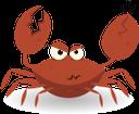 краб, морская фауна, морские животные, красный краб, crab, sea fauna, marine animals, red crab, krabbe, meeresfauna, meerestiere, rote krabbe, crabe, faune marine, animaux marins, crabe rouge, cangrejo, animales marinos, cangrejo rojo, granchio, fauna marina, animali marini, granchio rosso, caranguejo, fauna marinha, animais marinhos, caranguejo vermelho, морська фауна, морські тварини, червоний краб