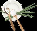 тарелка с фруктами, диета, витамины, калории, кокос, еда, fruit plate, diet, vitamins, coconut, food, obstteller, diät, kalorien, kokosnuss, lebensmittel, assiette de fruits, alimentation, vitamines, calories, noix de coco, nourriture, plato de fruta, calorías, piatto di frutta, vitamine, calorie, cocco, cibo, prato de frutas, dieta, vitaminas, calorias, coco, comida, тарілка з фруктами, дієта, вітаміни, калорії, їжа