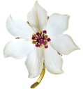 ювелирное украшение, золотой цветок, перламутр, золото, золотое украшение, драгоценные камни, рубин, jewelry, gold flower, pearl, gold jewelry, gems, ruby, schmuck, goldblume, perlen, gold, goldschmuck, edelsteine, rubin, bijoux, fleur d'or, or, bijoux en or, des pierres précieuses, rubis, joyas, flor de oro, perlas, joyas de oro, piedras preciosas, rubí, gioielli, fiore d'oro, perle, oro, gioielli in oro, pietre preziose, rubino, jóias, flor de ouro, pérola, ouro, jóias de ouro, pedras preciosas, rubi