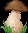 белый гриб, лесные грибы, съедобные грибы, гриб, porcini mushroom, forest mushrooms, edible mushrooms, mushroom, steinpilze, waldpilze, speisepilze, pilze, cèpes, champignons des bois, champignons comestibles, champignons, setas porcini, setas del bosque, setas comestibles, setas, funghi porcini, funghi di bosco, funghi commestibili, funghi, cogumelo porcini, cogumelos da floresta, cogumelos comestíveis, cogumelos, білий гриб, лісові гриби, їстівні гриби