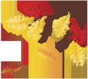 желтый лист, осенняя листва, дубовый лист, осень, ветка дуба, yellow leaf, autumn foliage, oak leaf, autumn, oak branch, leaf fall, oak, gelbes blatt, herbstlaub, eichenblatt, herbst, eiche zweig, blatt, eiche, feuille jaune, feuillage d'automne, feuille de chêne, automne, rameau de chêne, feuille, chêne, hoja amarilla, follaje de otoño, hoja de roble, otoño, rama de roble, hoja, roble, foglia gialla, fogliame autunnale, foglia di quercia, autunno, quercia ramoscello, foglia, di quercia, folha amarela, folhagem de outono, folha do carvalho, outono, ramo de carvalho, folha, carvalho, жовтий лист, осіннє листя, дубовий лист, осінь, гілка дуба, листопад, дуб