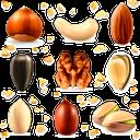 фундук, лесной орех, орехи кешью, грецкий орех, фисташки, семечки подсолнуха, миндаль, орехи, hazelnut, cashew nuts, walnut, pistachios, sunflower seeds, almonds, nuts, haselnuss, cashewnüsse, walnuss, pistazien, sonnenblumenkerne, mandeln, nüsse, noisettes, noix de cajou, pistaches, graines de tournesol, amandes, noix, avellana, anacardos, nuez, pistachos, pipas de girasol, almendras, nueces, nocciole, anacardi, pistacchi, semi di girasole, mandorle, noci, avelã, castanha de caju, noz, pistácios, sementes de girassol, amêndoas, nozes, лісовий горіх, горіхи кеш'ю, волоський горіх, фісташки, насіння соняшнику, мигдаль, горіхи