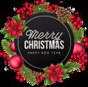новогоднее украшение, рождественское украшение, шары для ёлки, шишка, красный цветок, ветка ёлки, рождество, новый год, праздничное украшение, праздник, баннер, christmas decoration, christmas tree balls, pinecone, red flower, christmas tree branch, christmas, new year, holiday decoration, holiday, weihnachtsdekoration, christbaumkugeln, tannenzapfen, rote blume, weihnachtsbaumast, weihnachten, neues jahr, feiertagsdekoration, feiertag, fahne, décoration de noël, boules de sapin de noël, pomme de pin, fleur rouge, branche de sapin de noël, noël, nouvel an, décoration de vacances, vacances, bannière, bolas de árbol de navidad, piña, flor roja, rama de árbol de navidad, navidad, año nuevo, decoración navideña, fiesta, decorazioni natalizie, palle dell'albero di natale, pigne, fiore rosso, ramo di albero di natale, natale, capodanno, decorazione di festa, vacanza, decoração de natal, bolas de árvore de natal, pinha, flor vermelha, galho de árvore de natal, natal, ano novo, decoração do feriado, férias, banner, новорічна прикраса, різдвяна прикраса, кулі для ялинки, червона квітка, гілка ялинки, різдво, новий рік, святкове прикрашання, свято, банер