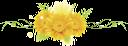 желтая гербера, цветы, yellow gerbera, flowers, gelbe gerbera, blumen, gerbera jaune, fleurs, gerbera amarillo, gerbera gialla, fiori, gerbera amarelo, flores, жовта гербера, квіти