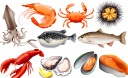 морепродукты, красная рыба, устрица, мидии, креветки, краб, кальмар, омар, морской ёж, форель, рыба, рыба фугу, еда, seafood, shrimp, squid, red fish, crab, lobster, oyster, mussels, sea urchin, fish, trout, puffer fish, food, meeresfrüchte, garnelen, tintenfische, roter fisch, krabben, hummer, austern, muscheln, seeigel, fisch, forellen, kugelfische, lebensmittel, fruits de mer, crevette, calmar, poisson rouge, crabe, homard, huître, moules, oursin, poisson, truite, poisson-globe, nourriture, mariscos, camarones, calamares, pescado rojo, cangrejo, langosta, ostras, mejillones, erizo de mar, pescado, trucha, pez globo, frutti di mare, gamberi, calamari, pesce rosso, granchio, aragosta, ostriche, cozze, ricci di mare, pesce, trota, pesce palla, cibo, frutos do mar, camarão, lula, peixe vermelho, caranguejo, lagosta, ostra, mexilhões, ouriço do mar, peixe, truta, peixe-balão, comida, морепродукти, червона риба, устриця, мідії, морський їжак, риба, риба фугу, їжа
