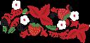 клубника, белый цветок, ягода, цветок клубники, strawberry, white flower, berry, strawberry flower, erdbeere, weiße blumen, beere, erdbeere blume, fraise, fleur blanche, baie, fleur de fraise, fresa, flor blanca, baya, flor de fresa, fragola, fiore bianco, frutti di bosco, fragola fiore, morango, flor branca, baga, flor de morango, полуниця, біла квітка, квітка полуниці