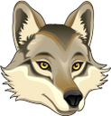 животные, волк, голова волка, animals, wolf's head, tiere, wolf, wolfskopf, animaux, loup, tête de loup, animales, cabeza de lobo, animali, lupo, testa di lupo, animais, lobo, cabeça de lobo, тварини, вовк, голова вовка