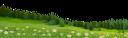 трава, ромашка, лужайка, ландшафт, лес, дерево, grass, daisy, lawn, landscape, tree, forest, gras, gänseblümchen, rasen, landschaft, baum, wald, herbe, marguerite, pelouse, paysage, arbre, forêt, hierba, margarita, césped, paisaje, árbol, bosque, erba, margherita, prato, paesaggio, albero, foresta, grama, margarida, gramado, paisagem, árvore, floresta, галявина, ліс