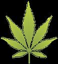 лист конопли, cannabis leaf, лист коноплі, зеленый лист, зелений лист, марихуана, наркотик, green leaf, drug, hanfblatt, ein grünes blatt, drogen, feuille de chanvre, une feuille verte, la marijuana, la drogue, hoja de cáñamo, una hoja verde, marihuana, drogas, foglio di canapa, un foglio verde, folha de cânhamo, uma folha verde, marijuana, droga