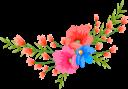 красный цветок, цветы, флора, red flower, flowers, rote blume, blumen, fleur rouge, fleurs, flore, flor roja, fiore rosso, fiori, flor vermelha, flores, flora, червона квітка, квіти