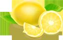 лимон, цитрусовые, тропический фрукт, желтый, фрукты, lemon, citrus fruits, tropical fruit, yellow, zitrone, zitrusfrüchte, tropische früchte, gelb, früchte, citron, agrumes, fruits tropicaux, jaune, fruit, limón, fruta tropical, amarillo, fruta, limone, agrumi, frutta tropicale, giallo, frutta, limão, frutas cítricas, frutas tropicais, amarelas, frutas, цитрусові, тропічний фрукт, жовтий, фрукти