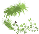 пальма, тропическое дерево, бабочка, отпуск, palm tree, tropical tree, butterfly, vacation, palme, tropischer baum, schmetterling, urlaub, palmier, arbre tropical, papillon, vacances, palmera, árbol tropical, mariposa, de vacaciones, palma, albero tropicale, farfalla, vacanza, palmeira, árvore tropical, borboleta, feriado, тропічне дерево, метелик, відпустка