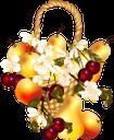 корзина с фруктами, корзина, яблоко, белые цветы, фрукты, basket with fruits, basket, apple, pear, cherry, white flowers, fruit, korb mit früchten, korb, apfel, birne, kirsche, weiße blumen, früchte, panier avec des fruits, panier, pomme, poire, cerise, fleurs blanches, fruits, cesta con frutas, manzana, cereza, flores blancas, fruta, cestino con frutta, cestino, mela, pera, ciliegia, fiori bianchi, frutta, cesta com frutas, cesta, maçã, pêra, cereja, flores brancas, frutas, кошик з фруктами, кошик, яблуко, груша, вишня, білі квіти, фрукти