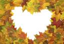 желтый лист, осенняя листва, рамка для фотошопа, осень, сердце, любовь, yellow leaf, autumn foliage, frame for photoshop, autumn, heart, love, gelbes blatt, herbstlaub, rahmen für photoshop, herbst, herz, liebe, feuille jaune, feuillage d'automne, cadre pour photoshop, automne, coeur, amour, hoja amarilla, follaje otoñal, marco para photoshop, otoño, corazón, foglia gialla, fogliame autunnale, cornice per photoshop, autunno, cuore, amore, folha amarela, folhagem de outono, moldura para photoshop, outono, coração, amor, жовтий лист, осіннє листя, рамка для фотошопу, осінь, серце, любов