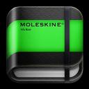 moleskine info book