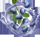 голубика, сок голубики, брызги сока, напитки, blueberries, blueberry juice, splashing juice, drinks, blaubeeren, blaubeersaft, spritzsaft, getränke, myrtilles, jus de myrtille, éclaboussures de jus, boissons, arándanos, jugo de arándanos, salpicaduras de jugo, mirtilli, succo di mirtillo, spruzzi di succo, bevande, mirtilos, suco de mirtilo, suco de salpicos, bebidas, лохина, сік лохини, бризки соку, напої