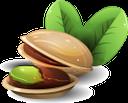 фисташки, орехи, nuts, pistazien, nüsse, pistaches, noix, pistachos, nueces, pistacchi, noci, pistachios, nozes, фісташки, горіхи