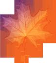 желтый лист, осенняя листва, осень, кленовый лист, символ канады, канадский клен, yellow leaf, autumn foliage, autumn, maple leaf, canada symbol, canadian maple, gelbes blatt, herbstlaub, herbst, ahornblatt, das symbol von kanada, kanadischem ahorn, kanada, feuille jaune, feuillage d'automne, automne, feuille d'érable, symbole du canada, érable canadien, hoja amarilla, follaje de otoño, otoño, hoja de arce, símbolo de canadá, arce canadiense, foglia gialla, fogliame autunnale, autunno, foglia d'acero, simbolo del canada, acero canadese, canada, folha amarela, folhagem de outono, outono, folha de bordo, o símbolo do canadá, bordo canadense, canadá, жовтий лист, осіннє листя, осінь, кленовий лист, символ канади, канадський клен, канада