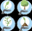 экология, зеленое растение, la ecología, las plantas verdes, ökologie, grüne pflanze, ecologia, planta verde, l'écologie, la plante verte, ecology, green plant, лист