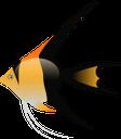 тропические рыбки, морская рыба, океаническая рыба, морские обитатели, морская фауна, рыбы, коралловый риф, разноцветные рыбки, красивые рыбки, tropical fish, sea fish, ocean fish, marine life, marine fauna, fish, coral reef, colorful fish, beautiful fish, tropische fische, seefische, meeresfische, meereslebewesen, meeresfauna, fische, korallenriffe, bunte fische, schöne fische, poisson tropical, poisson de mer, poisson océanique, vie marine, faune marine, poisson, récif de corail, poisson coloré, beau poisson, peces tropicales, peces marinos, peces oceánicos, vida marina, peces, arrecifes de coral, peces coloridos, peces hermosos, pesci tropicali, pesci di mare, pesci dell'oceano, vita marina, fauna marina, pesci, barriera corallina, pesci colorati, bellissimi pesci, peixes tropicais, peixes do mar, peixes do oceano, vida marinha, fauna marinha, peixes, recife de coral, peixes coloridos, peixes bonitos, тропічні рибки, морська риба, океанічна риба, морські мешканці, морська фауна, риби, кораловий риф, різнокольорові рибки, красиві рибки
