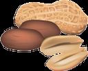 фисташки, земляной орех, орехи, peanuts, nuts, pistazien, erdnüsse, nüsse, pistaches, cacahuètes, noix, pistachos, cacahuetes, nueces, pistacchi, arachidi, noci, pistachios, amendoim, nozes, фісташки, земляний горіх, горіхи